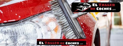 cepillo para lavar coches karcher